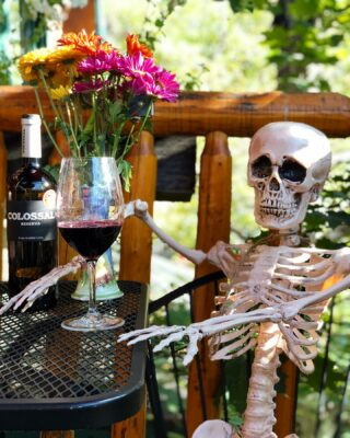 "That moment when you get back from a long day of hiking and your thinking ""give me wine or give me death"" Happy Friday everyone! Cheers to October and complimentary drinks at the Hidden Moose Lodge. #october #winetime #complimentarydrinks #comeplay #comestay #bedandbreakfast #havealittlefun #fridaymood #lodge #lodging #bartender #halloweenvibes"
