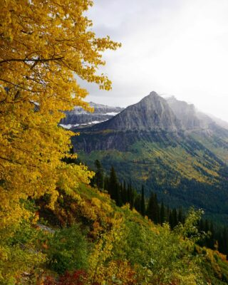 Happy first fall Friday! Hope your weekend is filled with autumn season 🕸🕷🦇 🎃 🍂🍁 everything. #itsfallyall #welovefall #comeplay #comestay #gnp #autumnleaves #crispmountainair #besttimeoftheyear